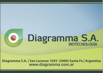 300×250 Diagramma