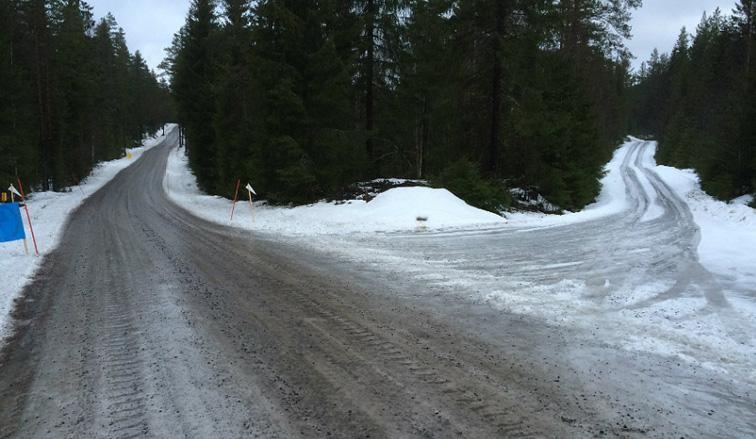 WRC: Finalmente se va a correr en Suecia, con la nieve como protagonista