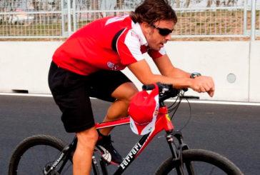 Fórmula 1: Atropellaron a Fernando Alonso